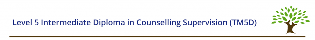 Level 5 Intermediate Diploma in Counselling Supervision (TM5D)